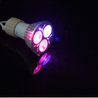 LED bulb light for growing fruit plants - 6 Watts = 4 Watts red + 2 Watts blue. GU10